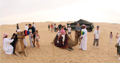Are You Want To Make Your Arabian Desert Tour Safe And Memorable
