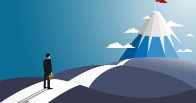 How To Establish The Right Career Path