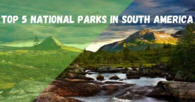 TOP 5 NATIONAL PARKS IN SOUTH AMERICA