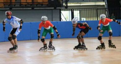 Types of Different Roller Skates