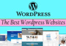 WordPress Based Website: Tops Ways to Secure it from Various Threats