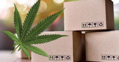 CBD Packaging Companies and More for Your Choice